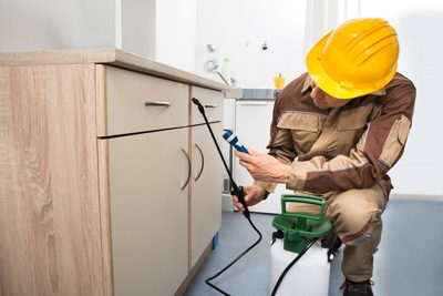 Important Things To Know Before Running Property Inspections